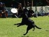 frisbee2-27