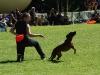 frisbee2-31